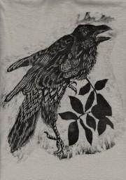 birdscanWEB