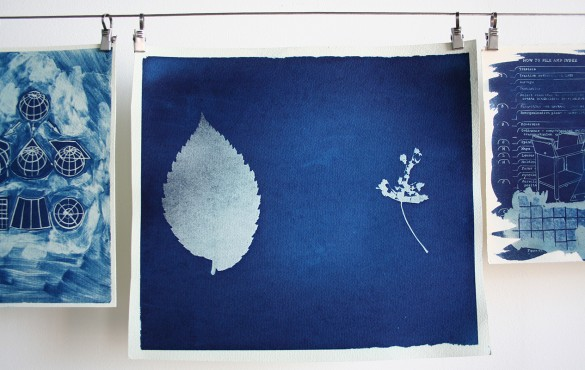 Photo Cyanotypes WEB